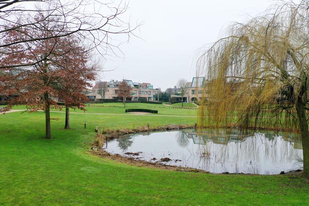 Luxueus villa-appartement met een bewoonbare oppervlakte van 595 m² te Maaseik