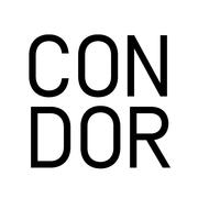 Condor Real Estate Development